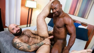 Hairy Bear can't get enough of Aaron Trainer's Long Cock - MenOver30