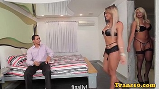 Gorgeous shemales threeway with male